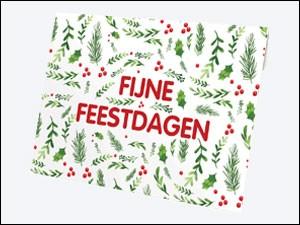 VVV Cadeaukaarten - Verpakkingen - Kerst mapje hulst