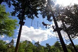 Besteed je VVV Lekkerweg aan een Top 10 belevenis zoals Klimbos