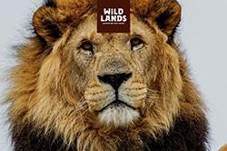 Besteed je VVV Lekkerweg aan een Top 10 belevenis zoals Wildlands